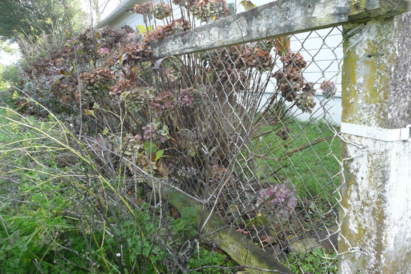 #13 A fence